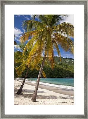 Saint Thomas Framed Print