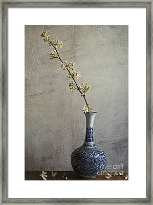 Sakura Framed Print by Elena Nosyreva