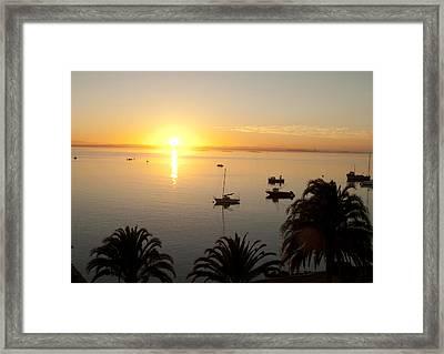 Saldanha Bay Framed Print by Tom Hudson