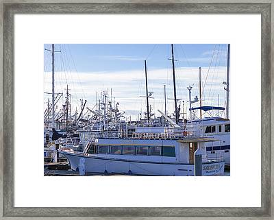 Salish Sea Framed Print