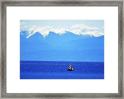 Salish Sea Sail Framed Print by Annie Pflueger