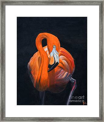 Sally The Flamingo Framed Print