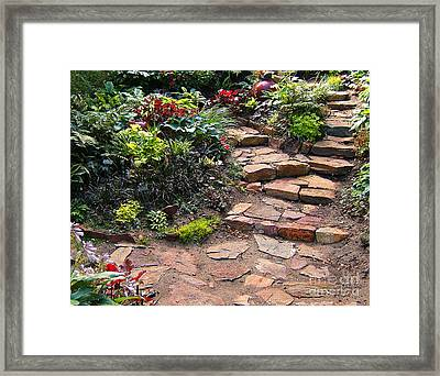 Sally's Garden Framed Print by Nancy Harrison