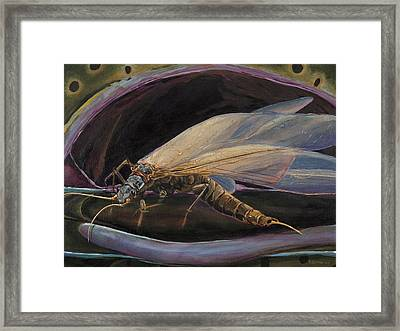 Salmon Fly Dinner Framed Print