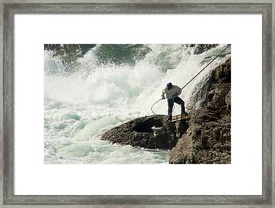 Salmon From The Froth Framed Print by Mary Lee Dereske