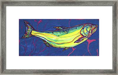 Salmon Of Knowledge Framed Print by Derrick Higgins