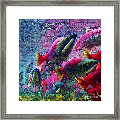 Salmon Run - Square - 2013-0103 Framed Print by Wingsdomain Art and Photography