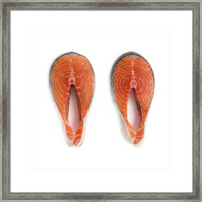 Salmon Steaks Framed Print by Science Photo Library