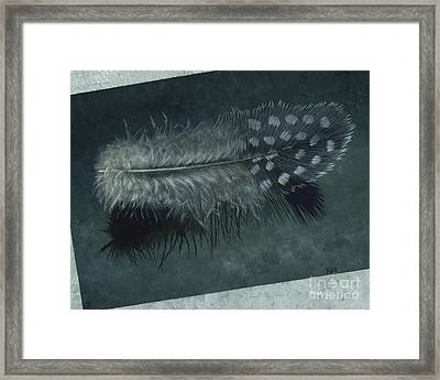 Sal's Feather Framed Print