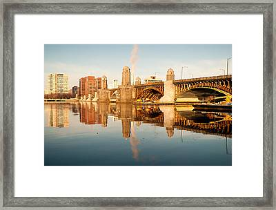 Salt-and-pepper Bridge Framed Print by Lee Costa