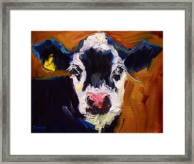 Salt And Pepper Cow 2 Framed Print