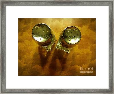 Salt And Pepper Framed Print by Mary Machare