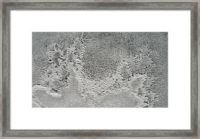 Salt Flower Five Framed Print by Mark Victors