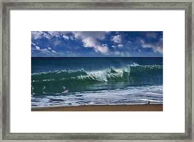 Salt Life Morning Framed Print
