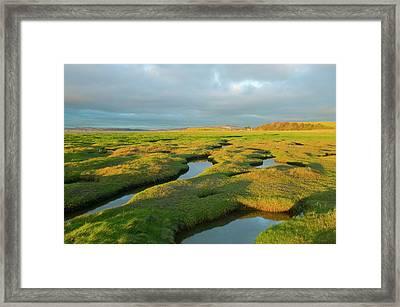 Salt Marsh At Hest Bank Framed Print