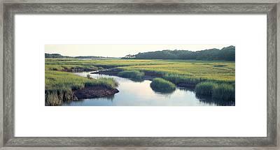 Salt Marsh Cape Cod Ma Usa Framed Print