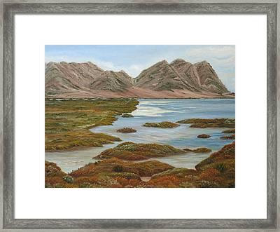 Salt Marsh Framed Print by Angeles M Pomata