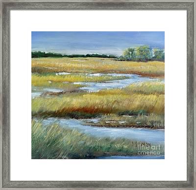 Salt Marsh Framed Print