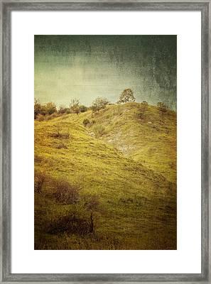 Salt Meadow Mounds Framed Print