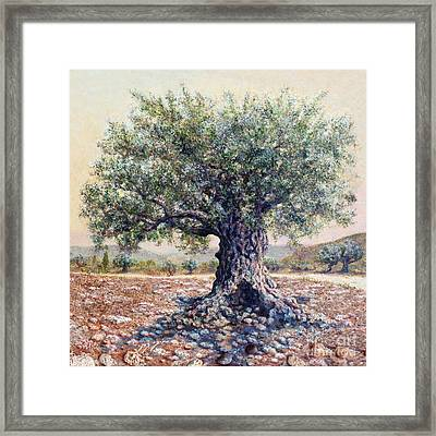 Salt Of The Earth Framed Print