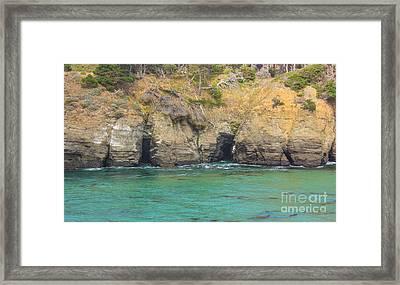 Salt Point Sea Caves Framed Print