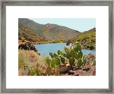 Salt River Framed Print