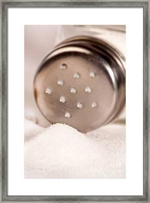 Salt Shaker  Framed Print