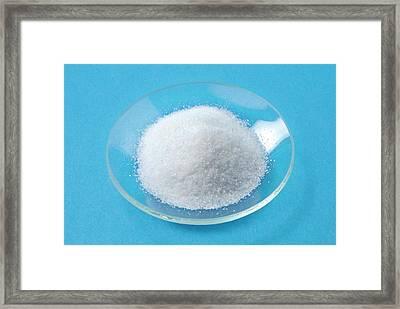 Salt Framed Print by Trevor Clifford Photography