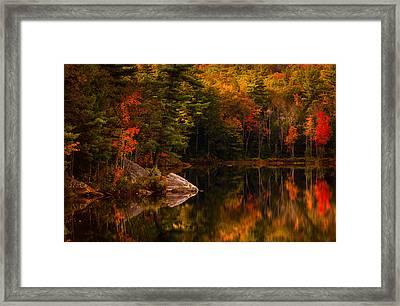 Saltmarsh Pond Framed Print