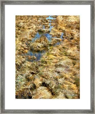 Saltmarsh Thaw Framed Print by RC DeWinter