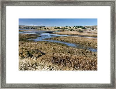 Saltmarshes Framed Print by Bob Gibbons