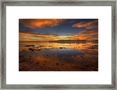 Salton Sea Color Framed Print by Peter Tellone