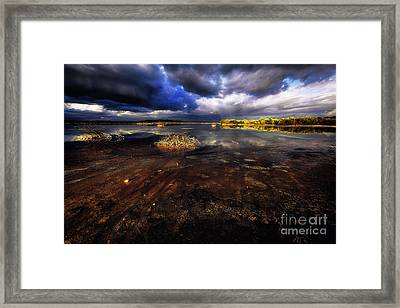 Saltwater Marsh  Framed Print by George Oze