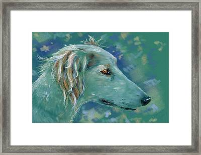 Saluki Dog Painting Framed Print by Michelle Wrighton
