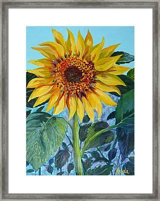 Salute The Sun Framed Print by Susan Duda