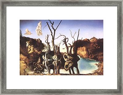 Salvador Dali Framed Print by Christo Grudev