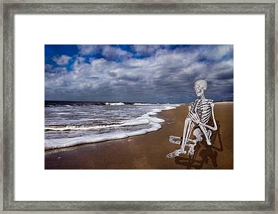 Sam Looks To The Ocean Framed Print by Betsy Knapp