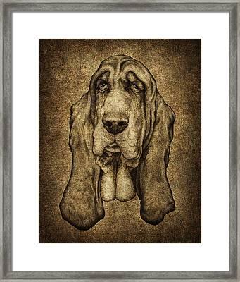 Sam Portait Framed Print
