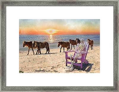 Sam Watches Over The Harem  Framed Print by Betsy Knapp