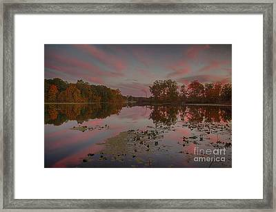 Same Time Same Place Different View Framed Print by Michael J Samuels