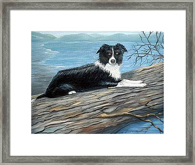 Sammy Mcdonald Framed Print