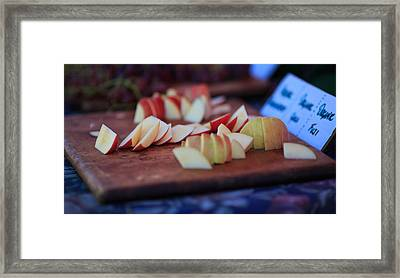 Samples Framed Print by Matthew Onheiber