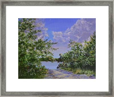 Sam's Cove Framed Print