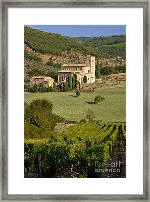 San Antimo - Tuscany Framed Print by Brian Jannsen