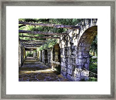 San Antonio C Framed Print