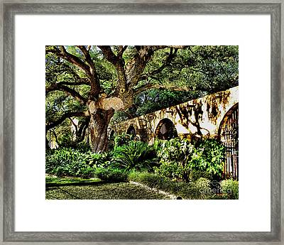 San Antonio D Framed Print by Ken Frischkorn