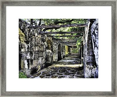 San Antonio F Framed Print