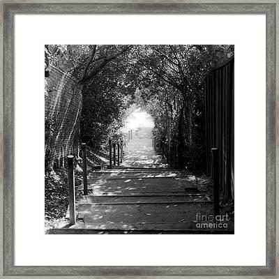 San Clemente Path Framed Print by Lorena Rivera