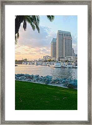 San Diego Beauty Framed Print by Andrew Kasten