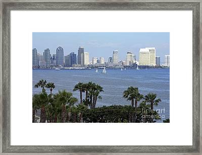 San Diego Skyline Framed Print by Sophie Vigneault